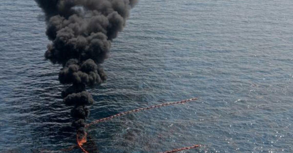 BP-Chef Tony Hayward hat eingestanden, dass die technischen Mittel zur Bekämpfung der Ölpest nicht zur Verfügung stehen.
