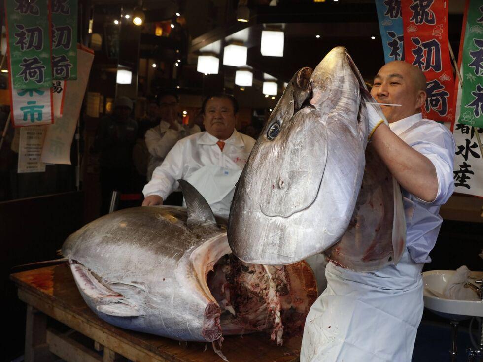 """5. Jänner 2020: Ein Sushi-Koch hält einen """"Bluefin-Tuna"""" hoch. Der Fisch wurde in der ersten Auktion des Tokio Fish Market 2020 versteigert – um 1,8 Millionen US-Dollar."""