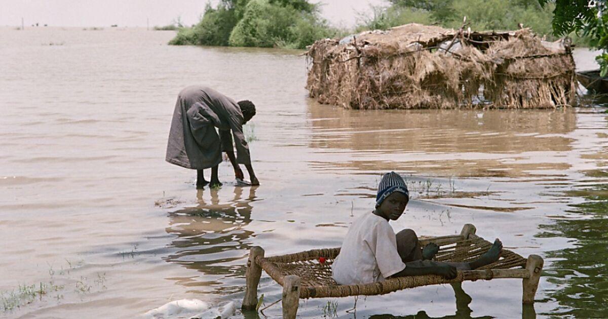 regen-und-berschwemmungen-im-sudan-62-tote-seit-juli