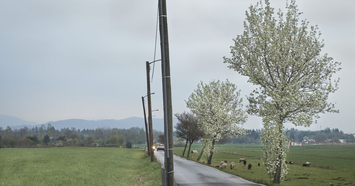 Schwarzgrabenweg