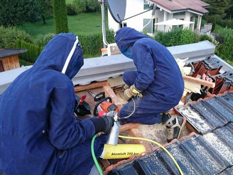 Allergisch Gegen Wespen Feuerwehr Musste Dach Entfernen Sn At