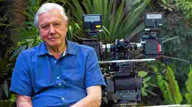 Tierfilmer David Attenborough.