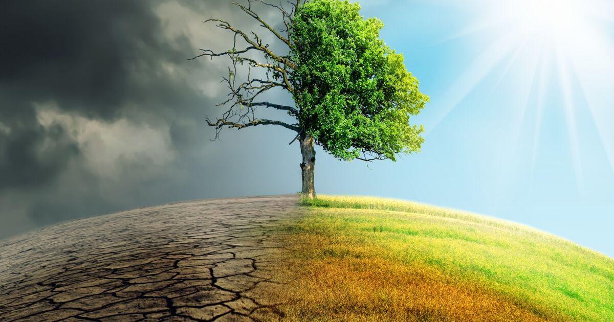 Das Klima