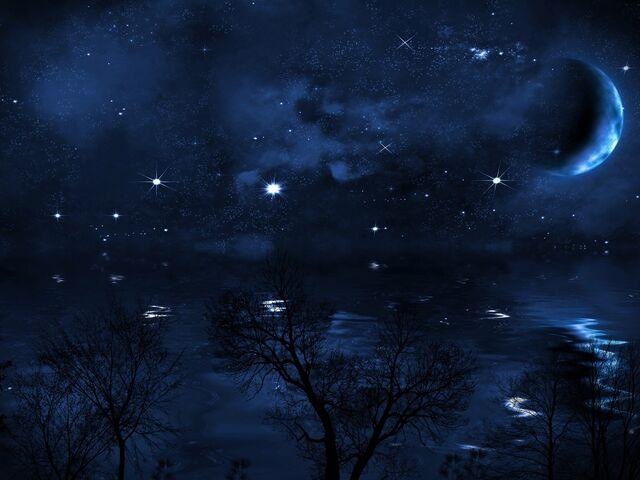 1fe03016d27c49 Der Blick in die Sterne 2019   SN.at