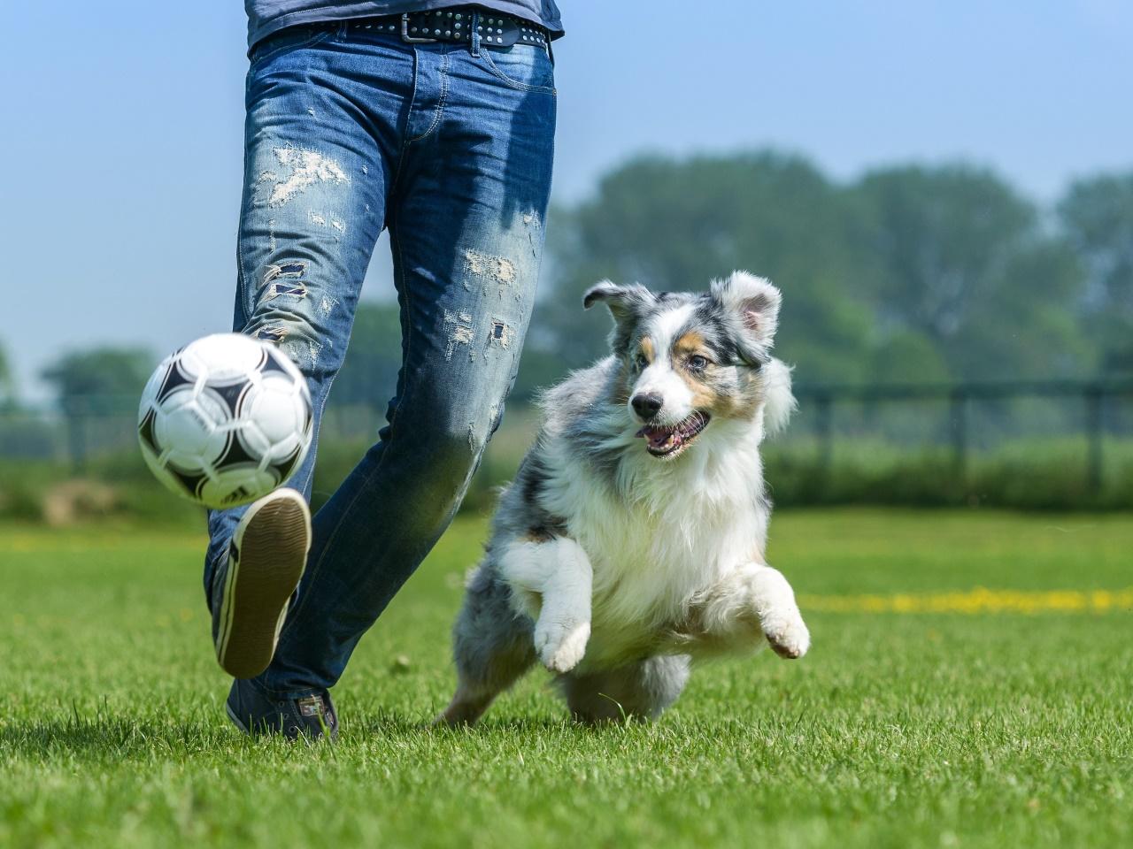 b033012059fe8 So weit die Füße tragen: Wenn High Heels und Pantoffeln schaden | SN.at