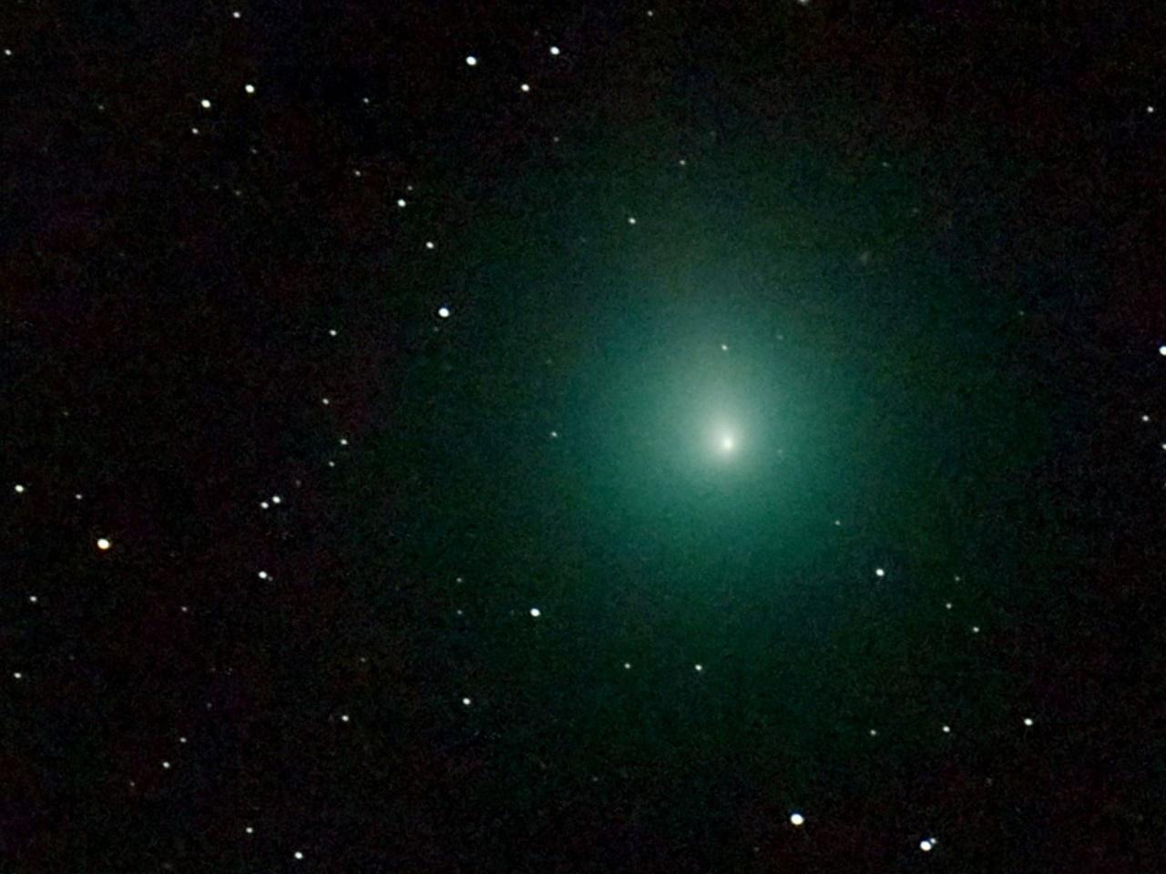 Der Komet Wirtanen leuchtet hell