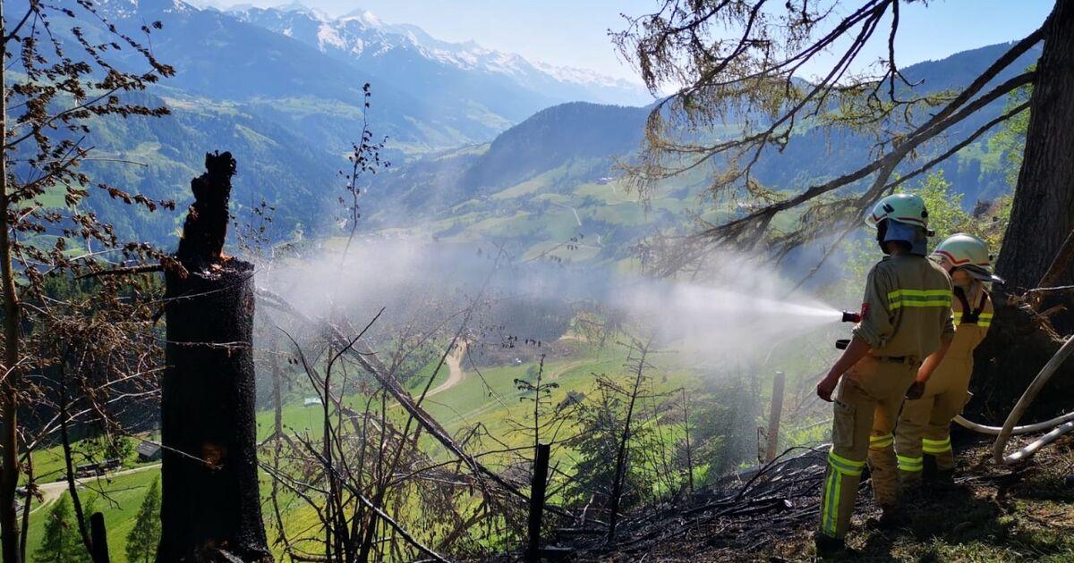 Goldegg: Feuerwehren bei Flurbrand mit 120 Mann im Einsatz
