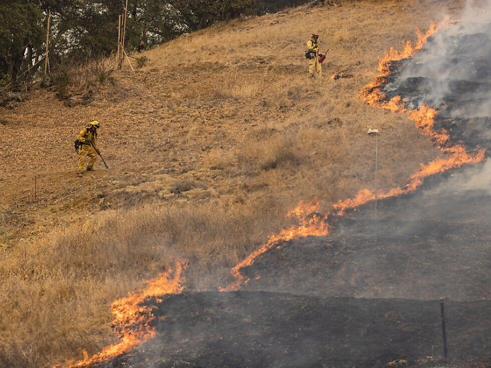 Große Brandschäden in Kaliforniens Weinbauregionen