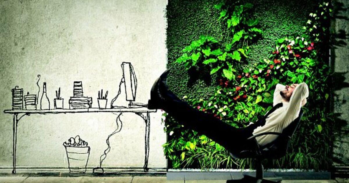 gr nes b ro gesundes arbeiten. Black Bedroom Furniture Sets. Home Design Ideas