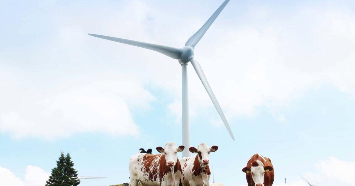 nach-lungauer-windkraft-absage-nun-steht-das-glemmtal-im-fokus