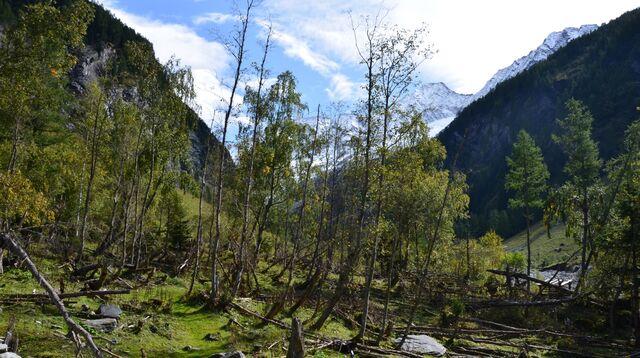 Nationalpark Hohe Tauern Ist Der Größte Und älteste In österreich