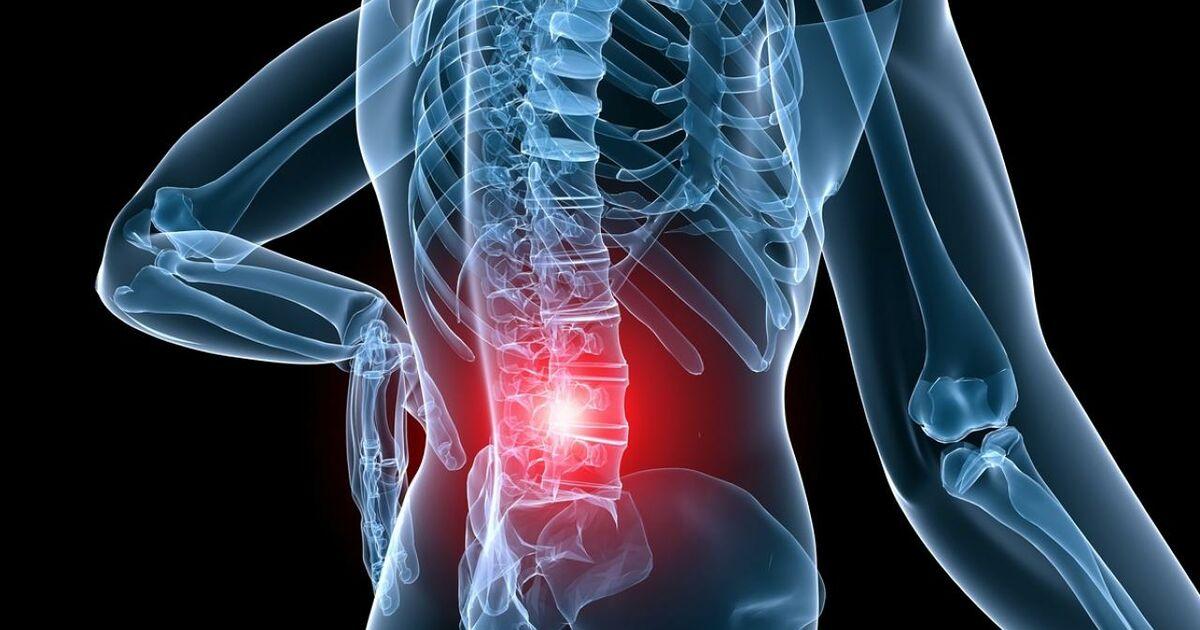 rheuma eine krankheit mit vielen facetten