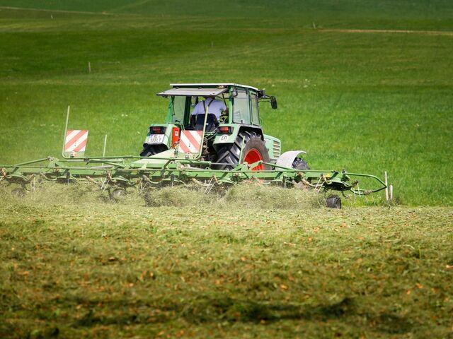 Salzburgs Landwirtschaft Verliert Taglich Flachen Im Ausmass