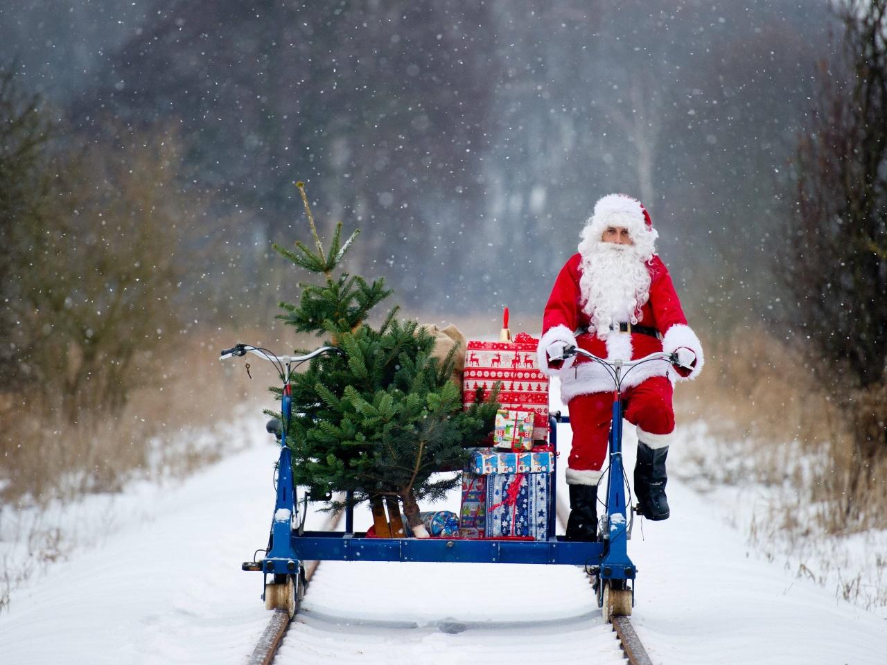 Soll der Weihnachtsbaum echt sein?
