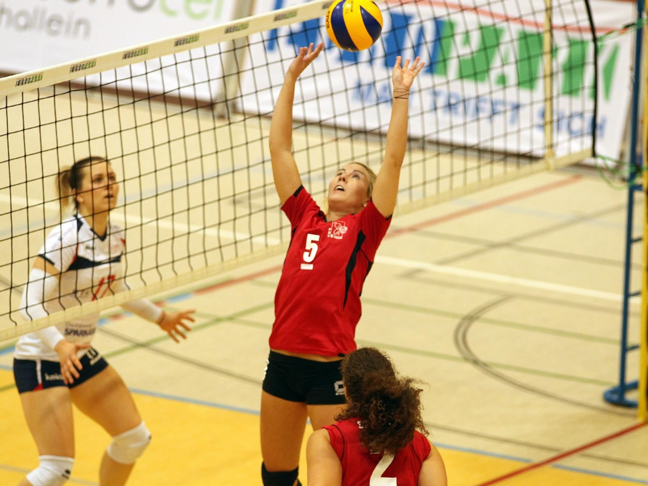 Volleyball: Sensation nach Analyse im Bus