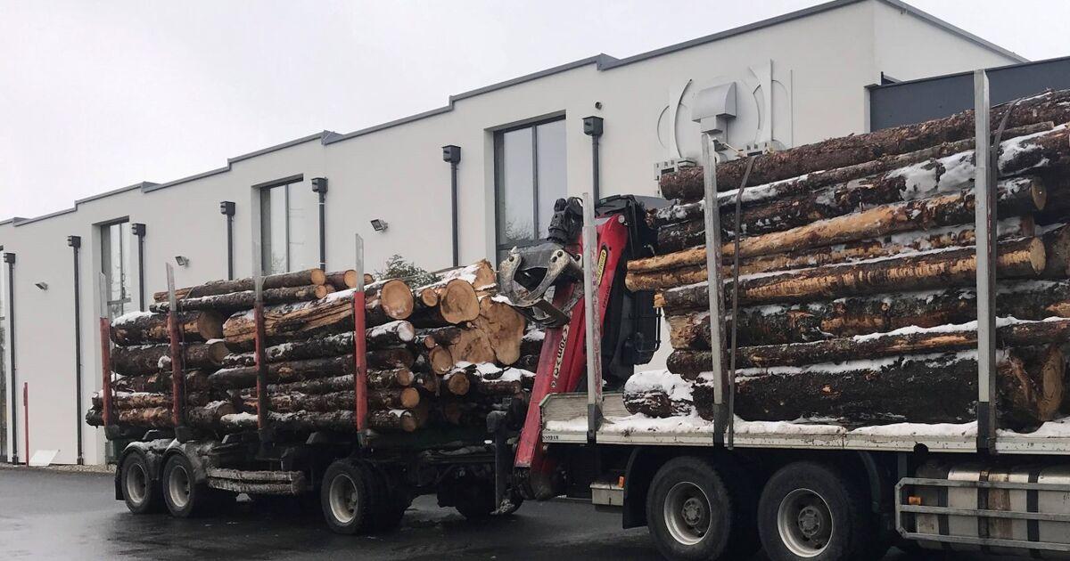 Zehn-Tonnen-bergewicht-Polizei-zieht-in-Salzburg-Holztransporter-aus-dem-Verkehr